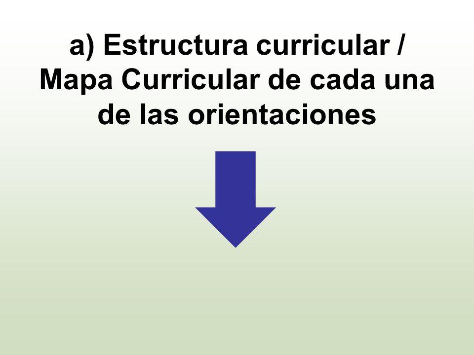 a) Estructura curricular / Mapa Curricular de cada una de las orientaciones