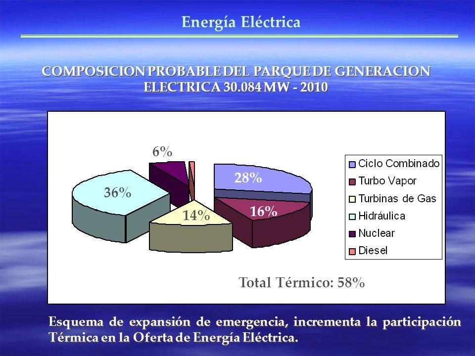 Energía Eléctrica 6% 28% 36% 16% 14% Total Térmico: 58%