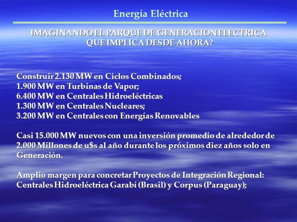 IMAGINANDO EL PARQUE DE GENERACION ELECTRICA QUE IMPLICA DESDE AHORA