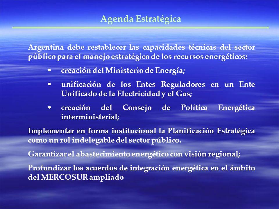 Agenda Estratégica Argentina debe restablecer las capacidades técnicas del sector público para el manejo estratégico de los recursos energéticos: