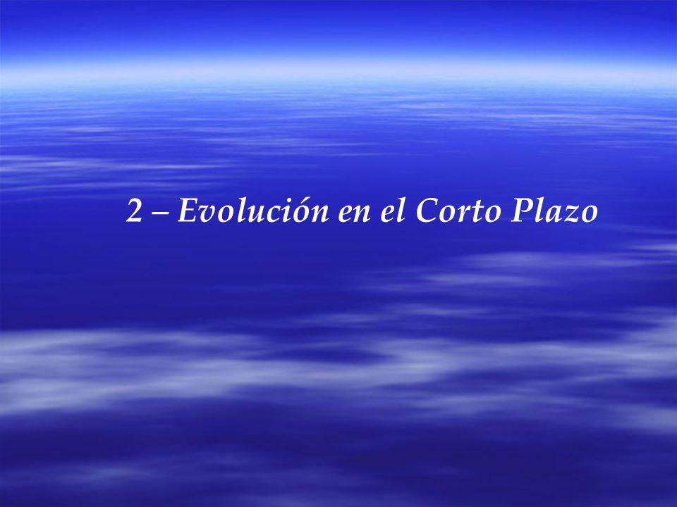 2 – Evolución en el Corto Plazo