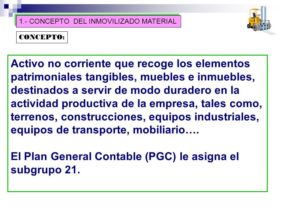 El Plan General Contable (PGC) le asigna el subgrupo 21.