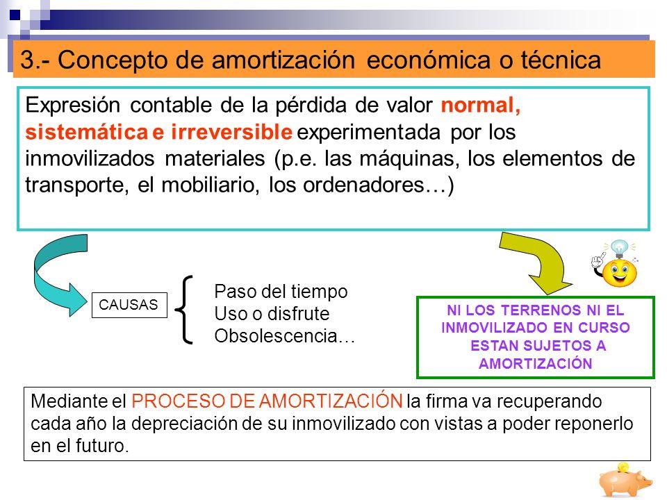 3.- Concepto de amortización económica o técnica