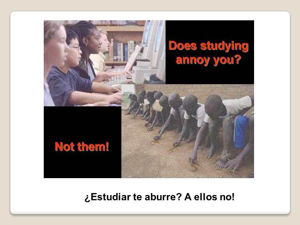 ¿Estudiar te aburre A ellos no!