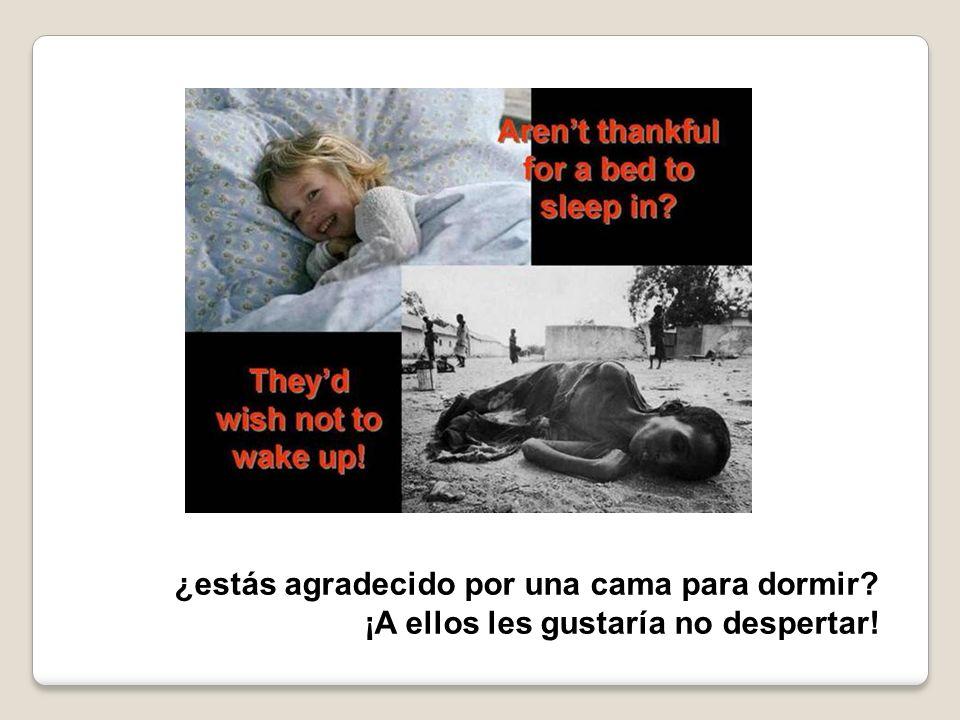 ¡A ellos les gustaría no despertar!