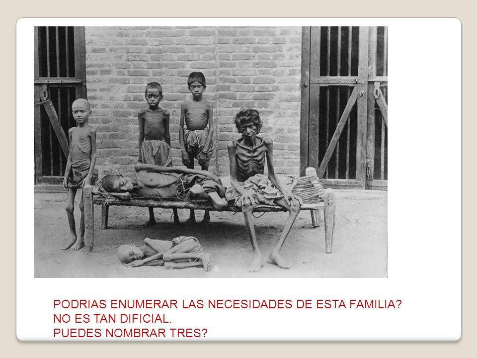 PODRIAS ENUMERAR LAS NECESIDADES DE ESTA FAMILIA