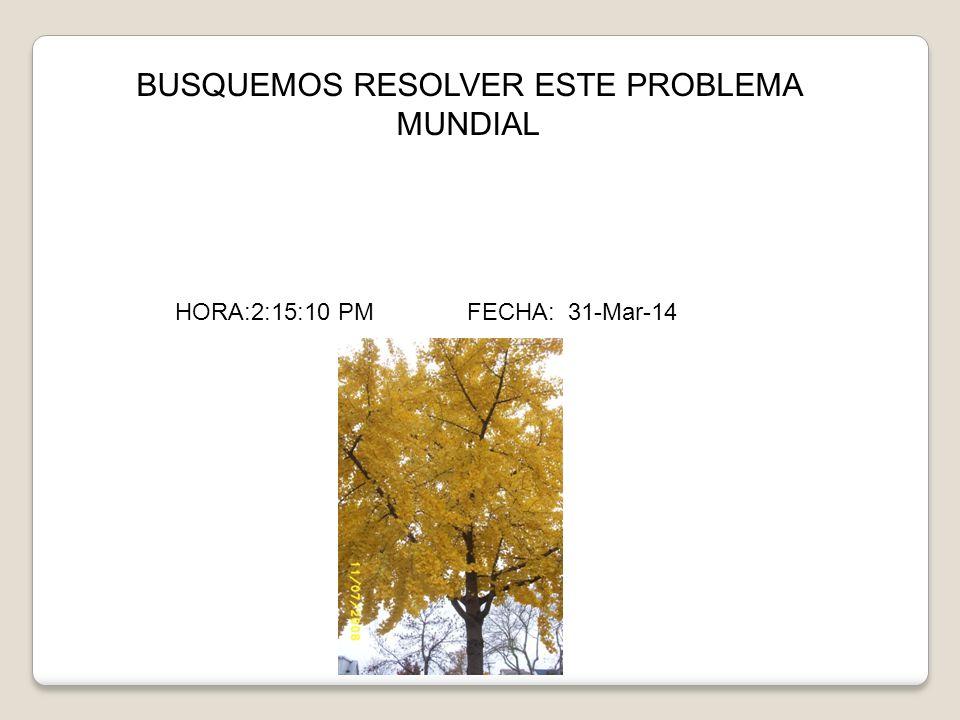 BUSQUEMOS RESOLVER ESTE PROBLEMA MUNDIAL