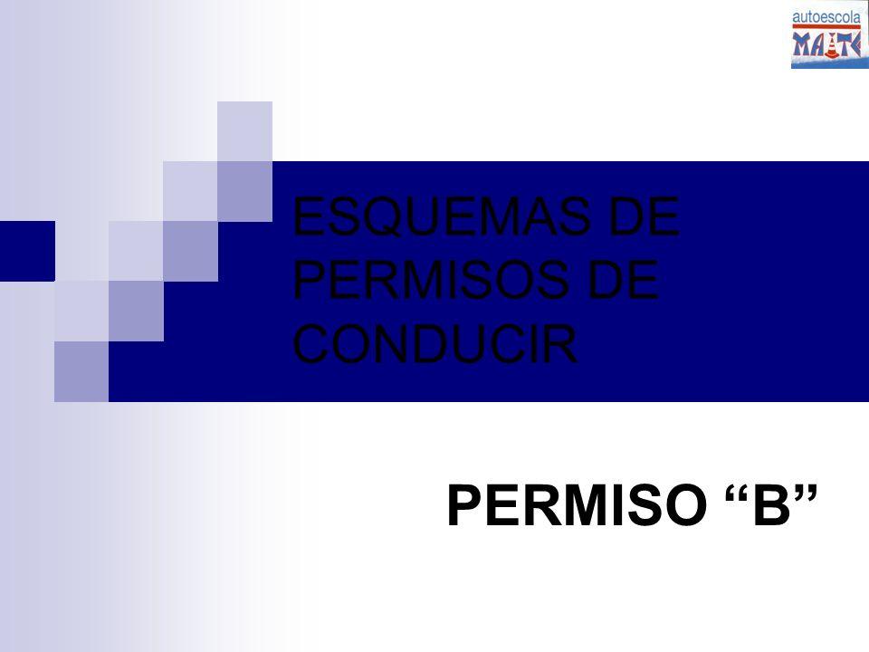 ESQUEMAS DE PERMISOS DE CONDUCIR