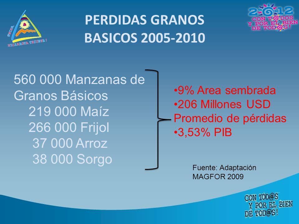 PERDIDAS GRANOS BASICOS 2005-2010