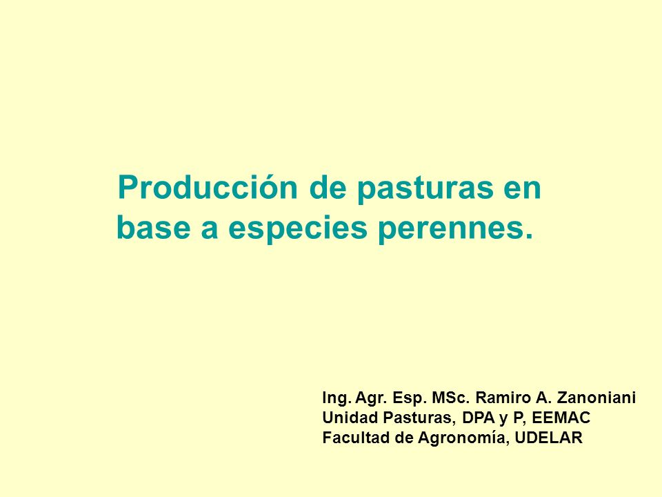 Producción de pasturas en base a especies perennes.