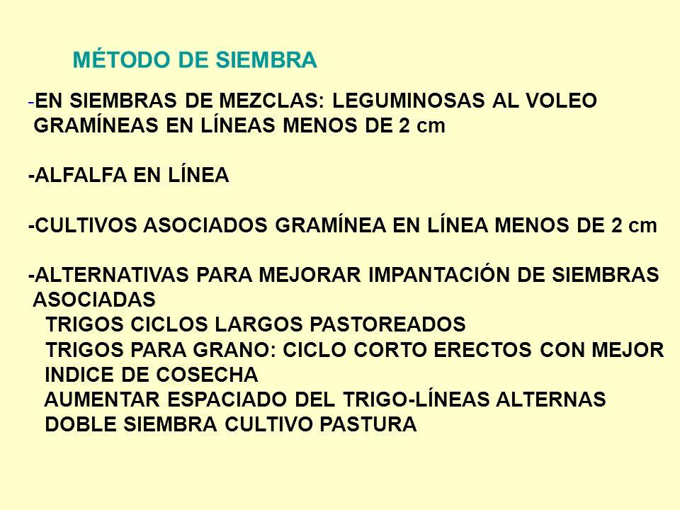 MÉTODO DE SIEMBRA EN SIEMBRAS DE MEZCLAS: LEGUMINOSAS AL VOLEO