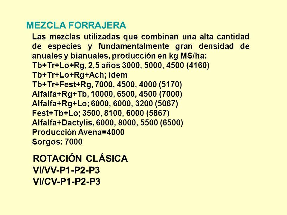 MEZCLA FORRAJERA ROTACIÓN CLÁSICA VI/VV-P1-P2-P3 VI/CV-P1-P2-P3