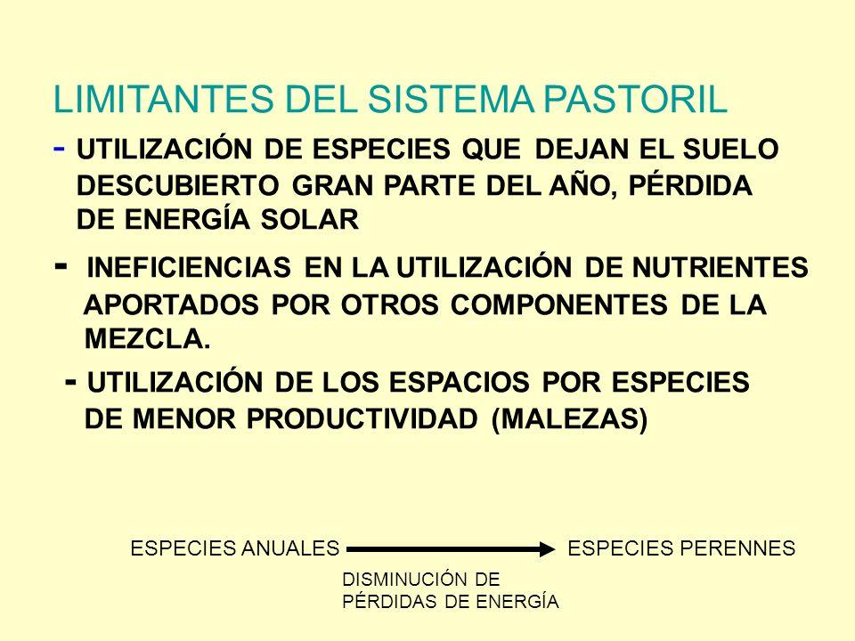 - INEFICIENCIAS EN LA UTILIZACIÓN DE NUTRIENTES