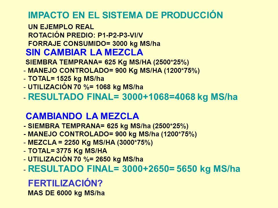 IMPACTO EN EL SISTEMA DE PRODUCCIÓN