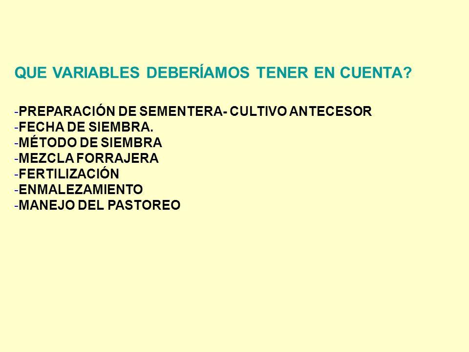 QUE VARIABLES DEBERÍAMOS TENER EN CUENTA