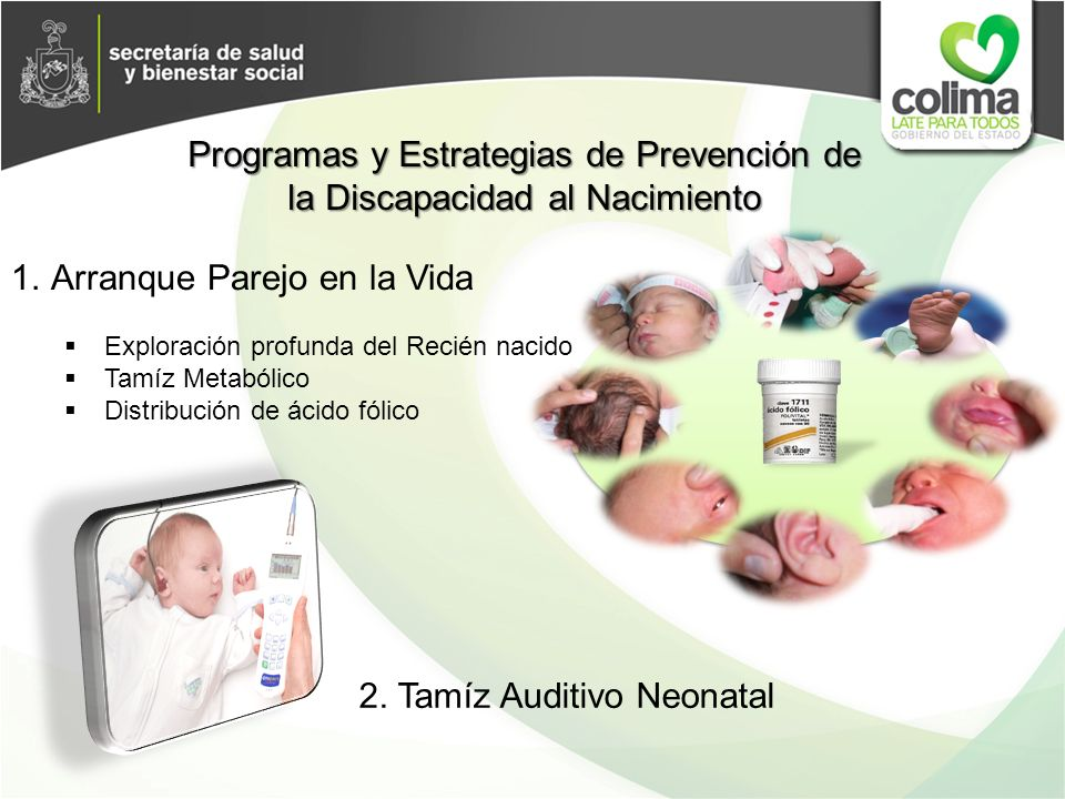 Programas y Estrategias de Prevención de la Discapacidad al Nacimiento