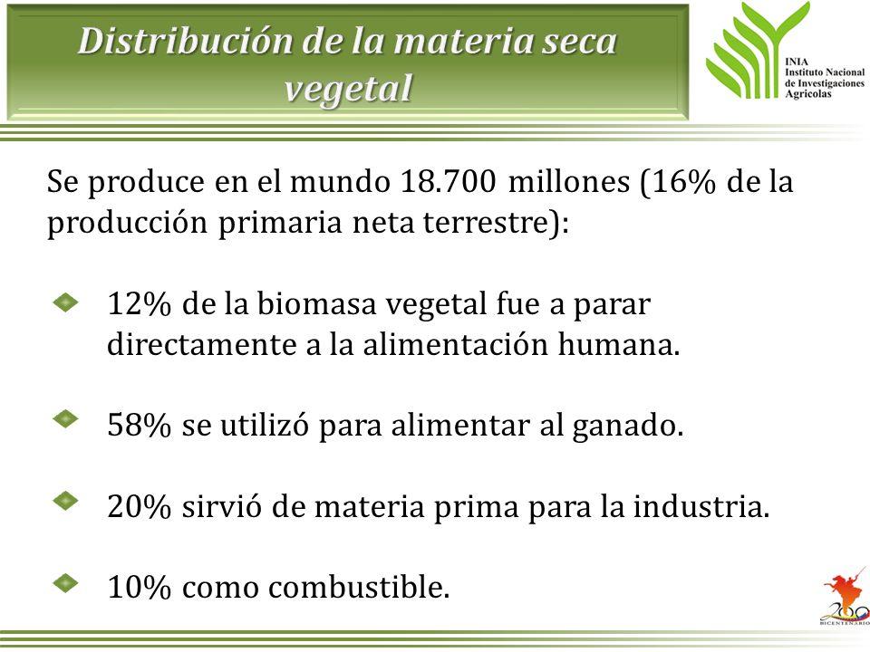 Distribución de la materia seca vegetal
