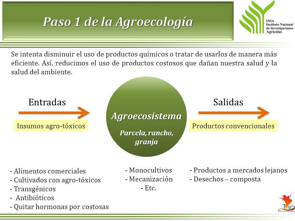 Paso 1 de la Agroecología