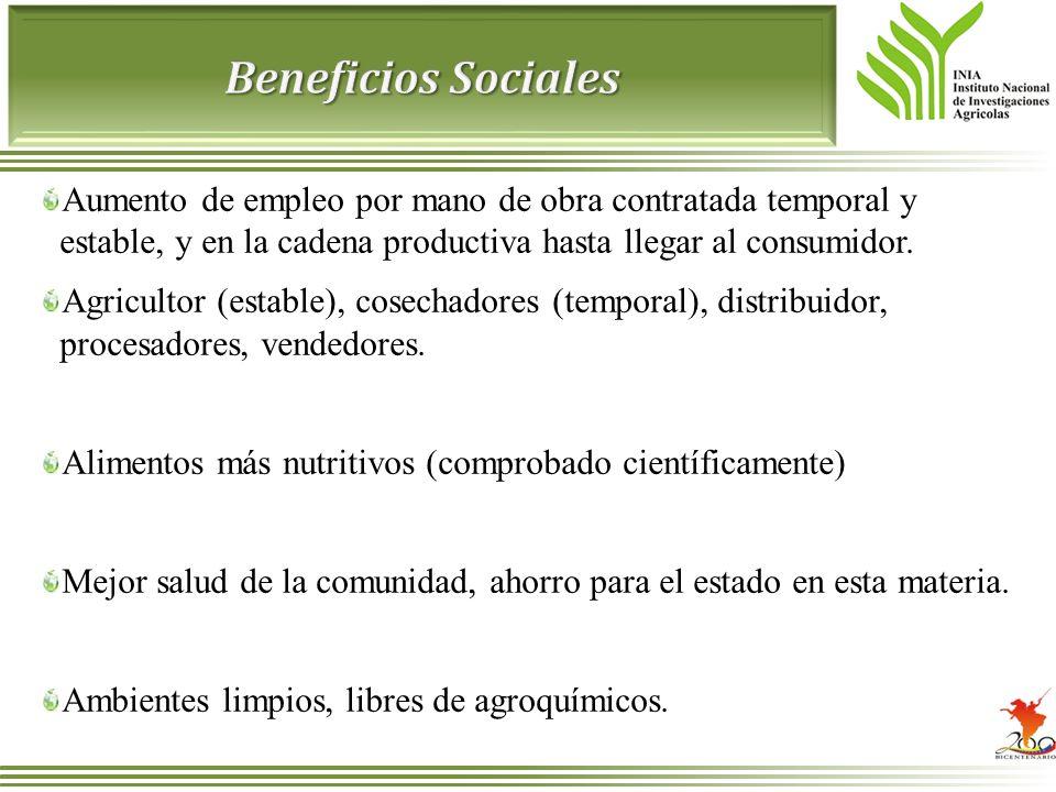 Beneficios Sociales Aumento de empleo por mano de obra contratada temporal y estable, y en la cadena productiva hasta llegar al consumidor.