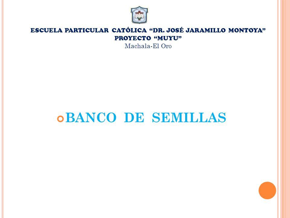 ESCUELA PARTICULAR CATÓLICA DR. JOSÉ JARAMILLO MONTOYA
