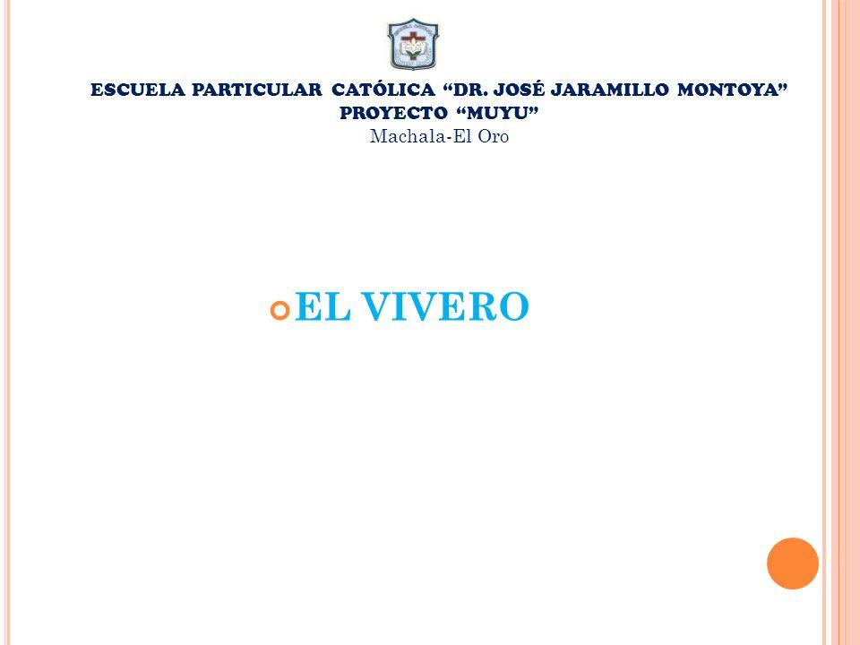 EL VIVERO ESCUELA PARTICULAR CATÓLICA DR. JOSÉ JARAMILLO MONTOYA