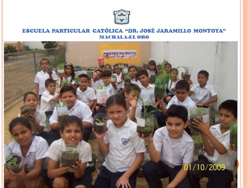 SEXTO AÑO DE EDUCACIÓN BÁSICA PARALELO c