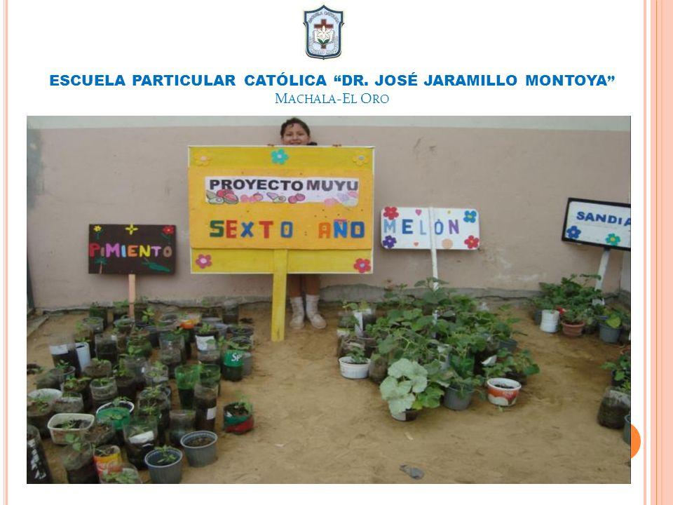 ESCUELA PARTICULAR CATÓLICA DR. JOSÉ JARAMILLO MONTOYA Machala-El Oro