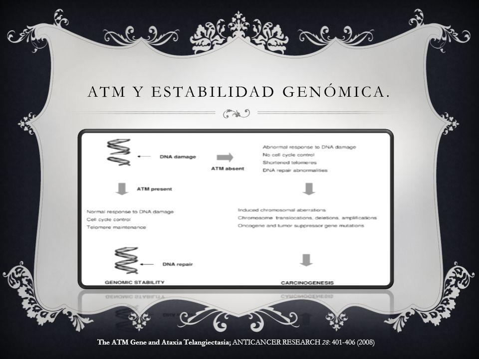 ATM y estabilidad genómica.