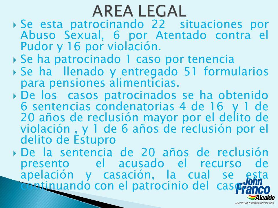 AREA LEGAL Se esta patrocinando 22 situaciones por Abuso Sexual, 6 por Atentado contra el Pudor y 16 por violación.