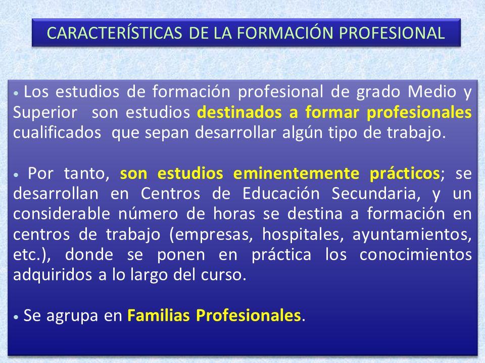 CARACTERÍSTICAS DE LA FORMACIÓN PROFESIONAL