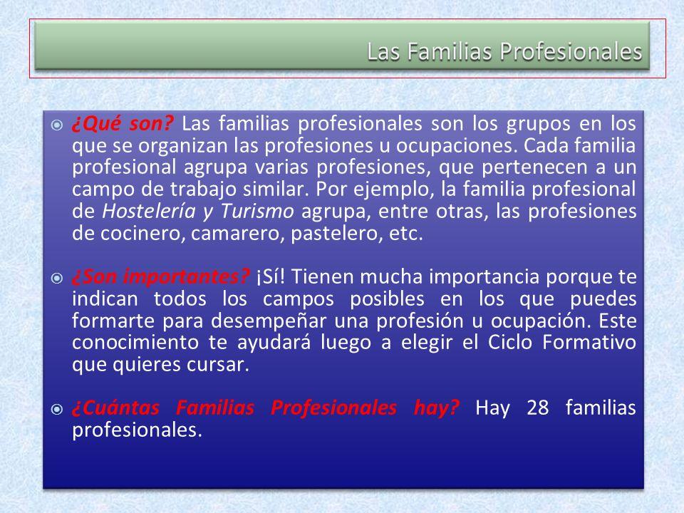 ¿Cuántas Familias Profesionales hay Hay 28 familias profesionales.