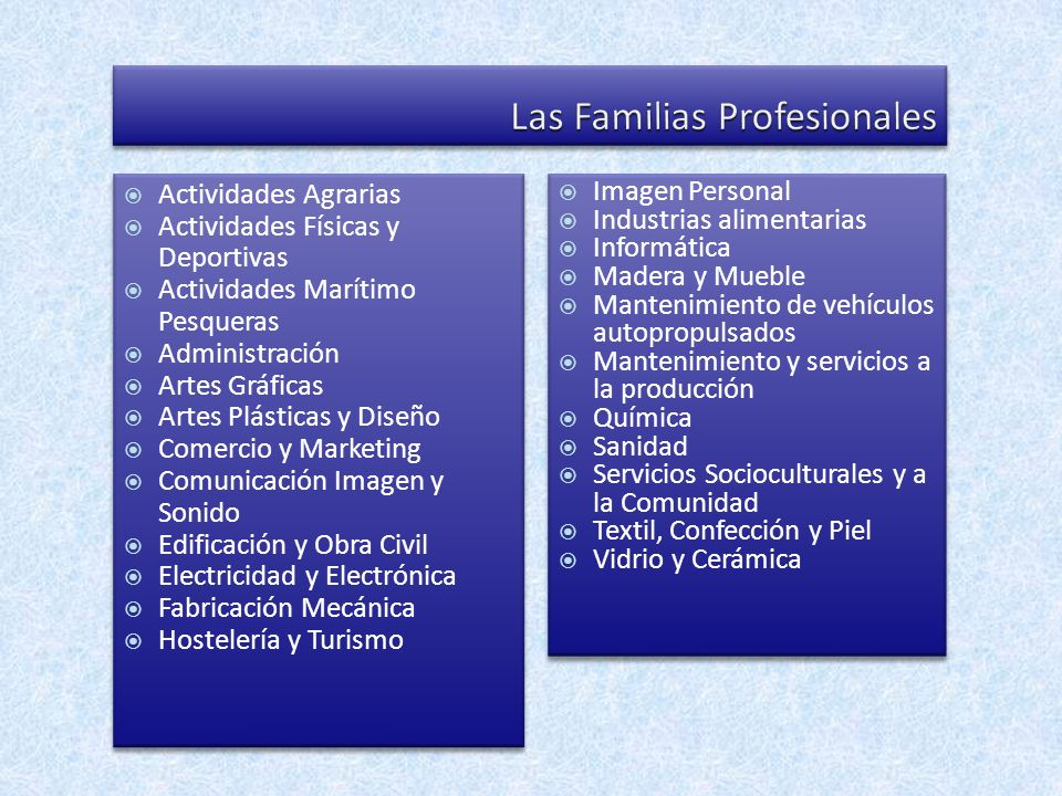Las Familias Profesionales