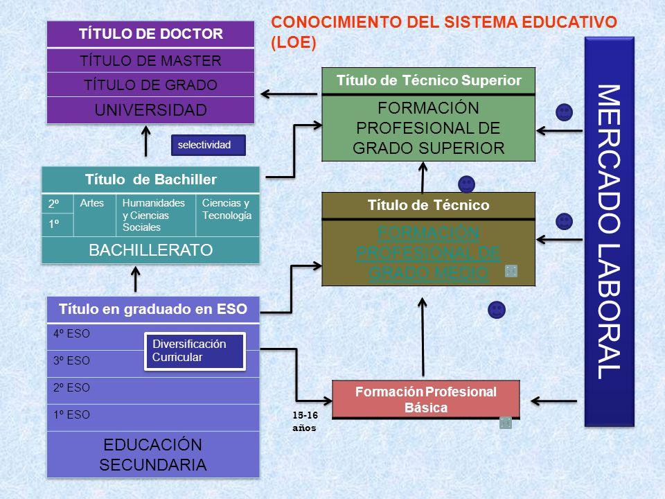 MERCADO LABORAL CONOCIMIENTO DEL SISTEMA EDUCATIVO (LOE)