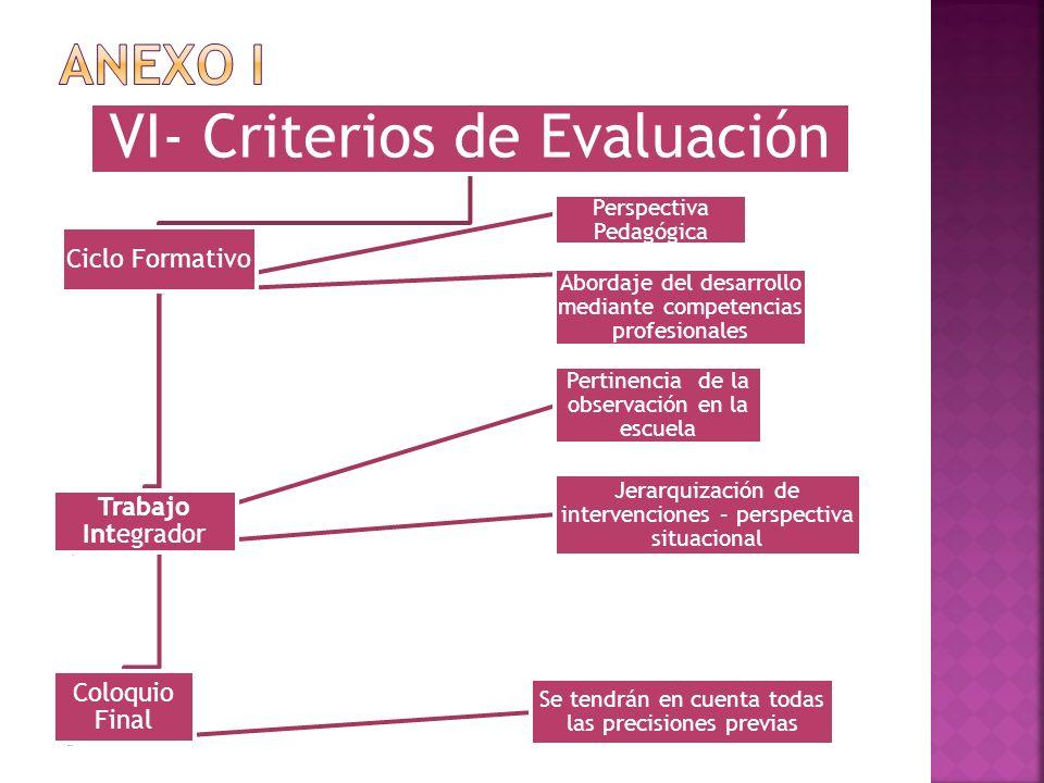 VI- Criterios de Evaluación