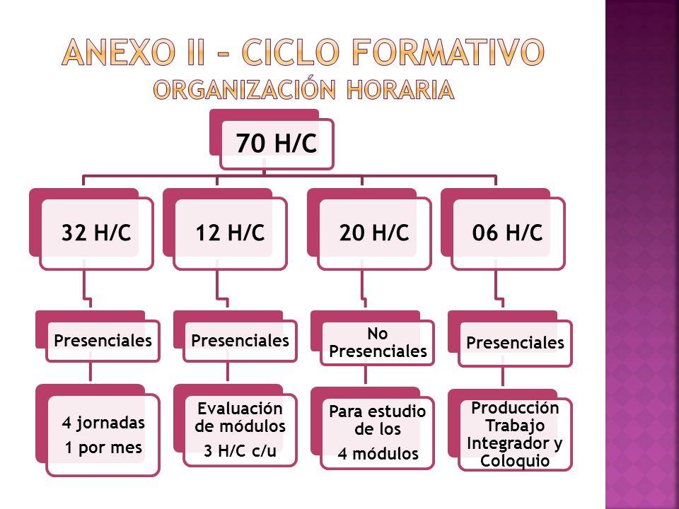 ANEXO II – CICLO FORMATIVO Organización Horaria