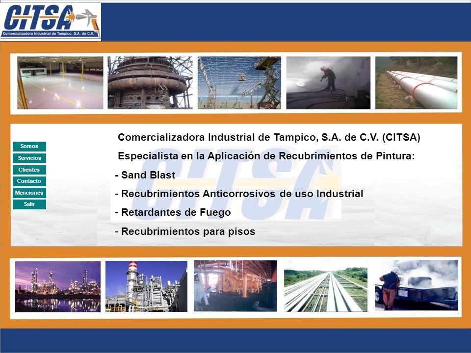 Comercializadora Industrial de Tampico, S.A. de C.V. (CITSA)