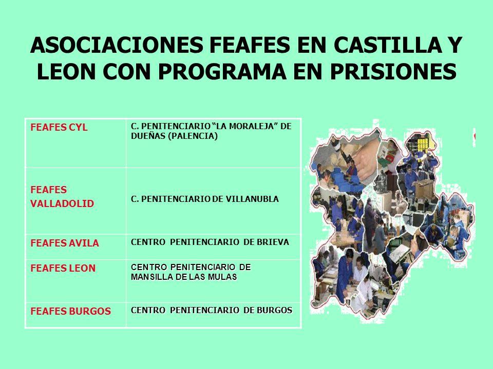 ASOCIACIONES FEAFES EN CASTILLA Y LEON CON PROGRAMA EN PRISIONES