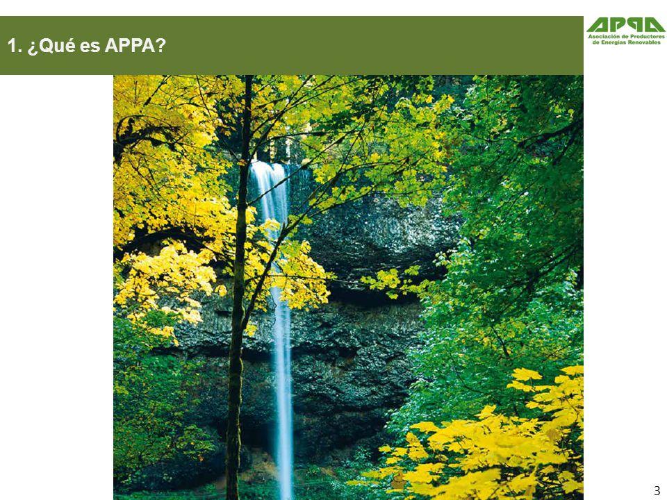 1. ¿Qué es APPA 3