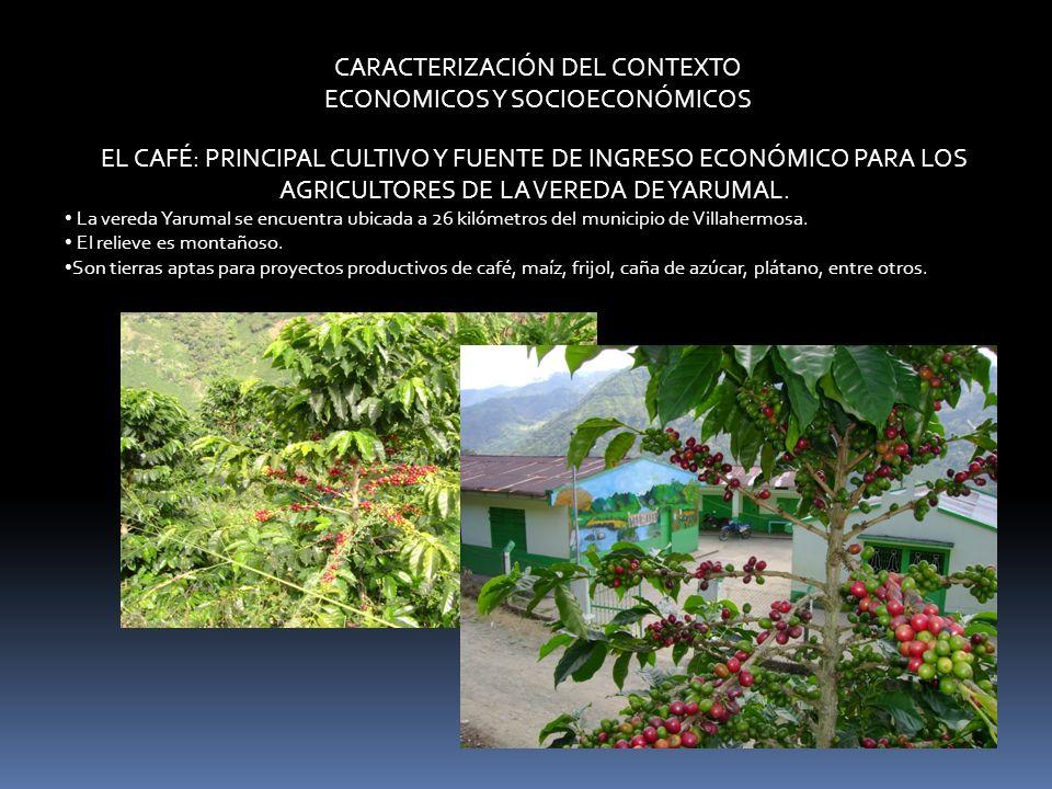 CARACTERIZACIÓN DEL CONTEXTO ECONOMICOS Y SOCIOECONÓMICOS