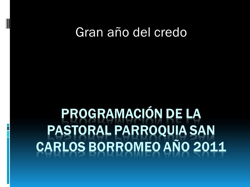 Programación de la pastoral parroquia san Carlos borromeo año 2011