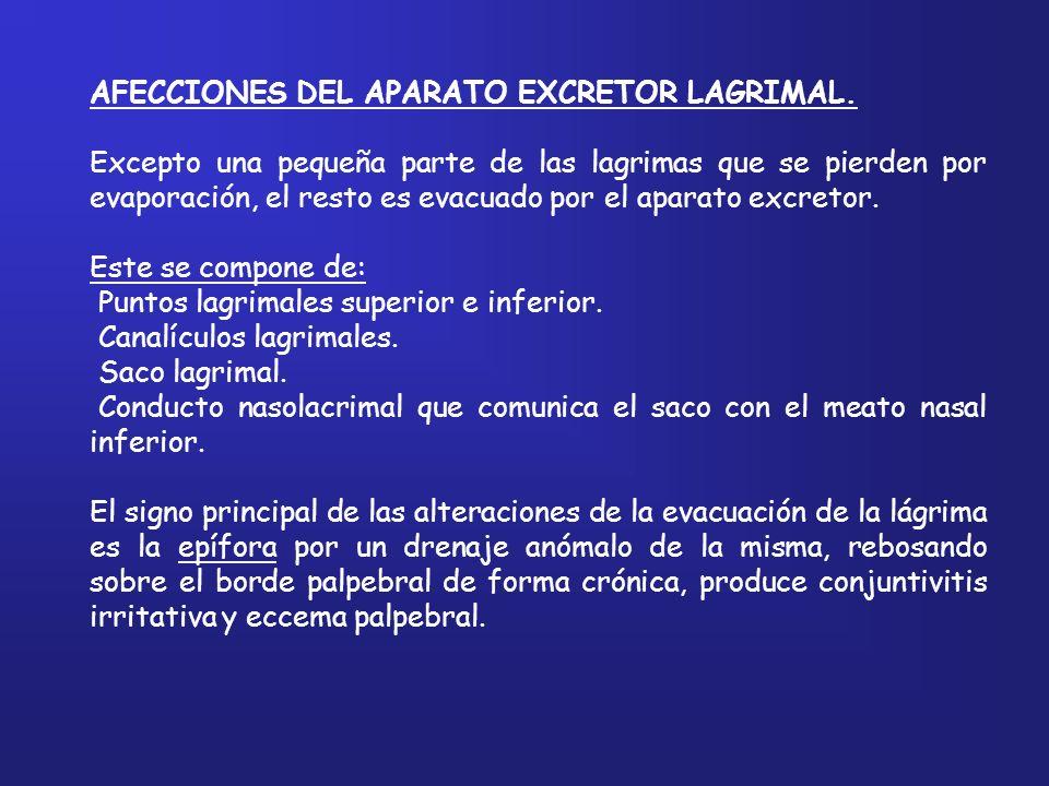 AFECCIONES DEL APARATO EXCRETOR LAGRIMAL.