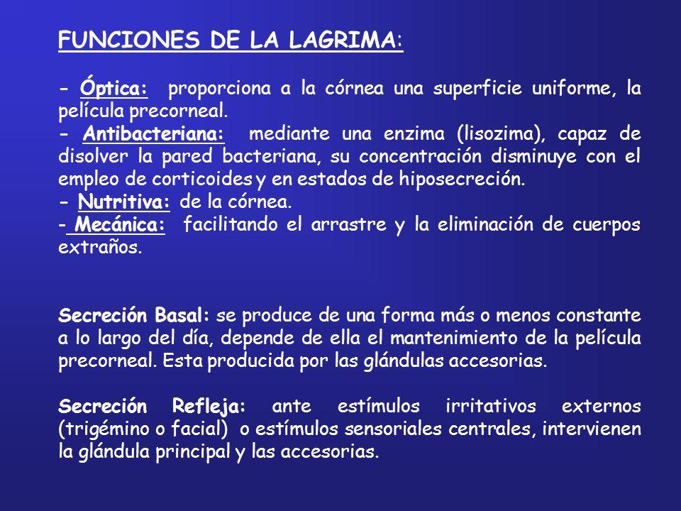 FUNCIONES DE LA LAGRIMA: