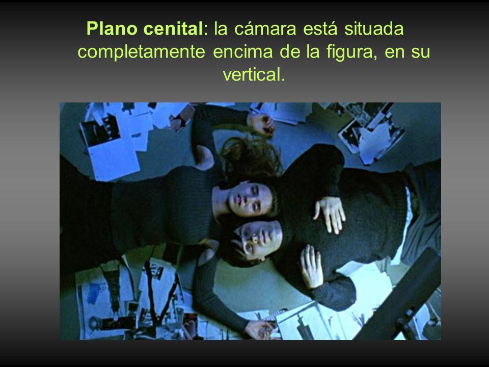 Plano cenital: la cámara está situada completamente encima de la figura, en su vertical.