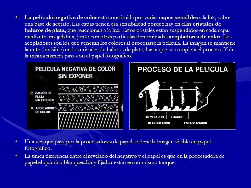 La película negativa de color está constituida por varias capas sensibles a la luz, sobre una base de acetato. Las capas tienen esa sensibilidad porque hay en ellas cristales de haluros de plata, que reaccionan a la luz. Estos cristales están suspendidos en cada capa, mediante una gelatina, junto con otras partículas denominadas acopladores de color. Los acopladores son los que generan los colores al procesarse la película. La imagen se mantiene latente (invisible) en los cristales de haluros de plata, hasta que se completa el proceso. Y de la misma manera pasa con el papel fotografico.