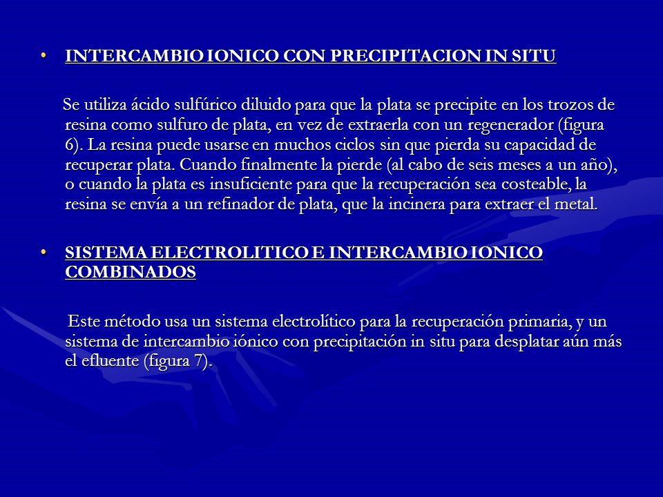 INTERCAMBIO IONICO CON PRECIPITACION IN SITU