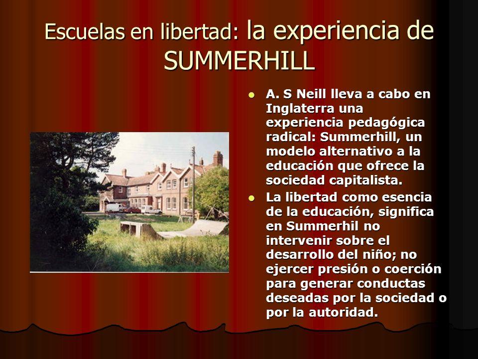 Escuelas en libertad: la experiencia de SUMMERHILL