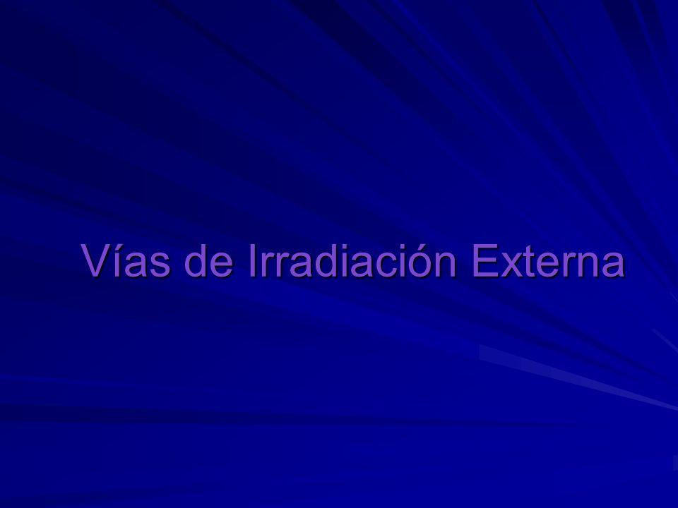Vías de Irradiación Externa