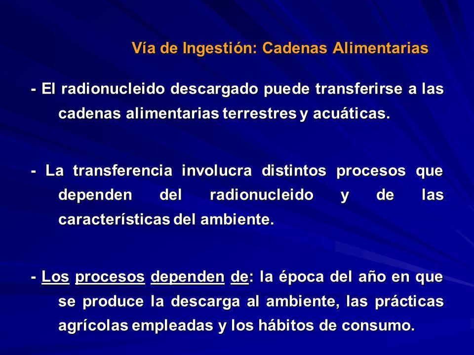 Vía de Ingestión: Cadenas Alimentarias
