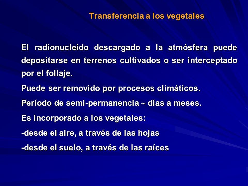 Transferencia a los vegetales