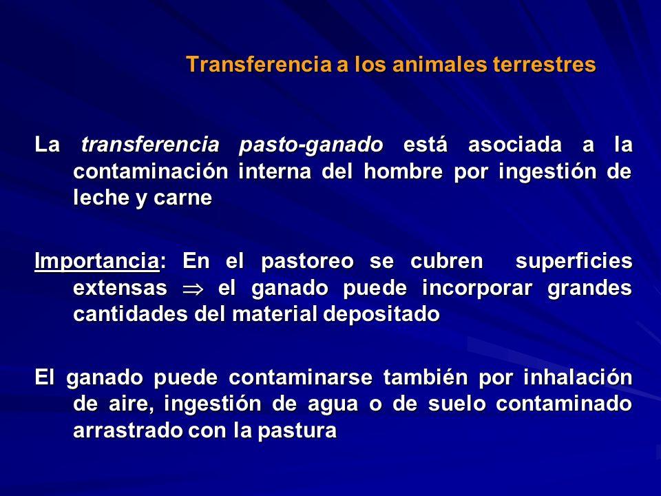 Transferencia a los animales terrestres